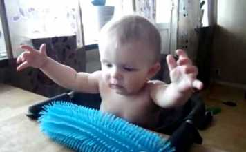Baby Is Terrified Of A New Squishy Toy